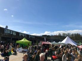 Lomond Shores Spring Fest : 2