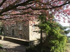 Dumbarton Castle : 1