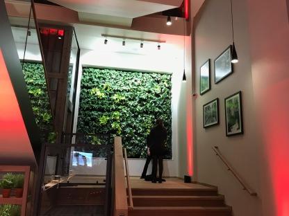Vapiano Glasgow : Inside 2
