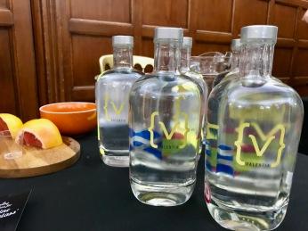 Gin Fall 2018 Event : Valentia Gin 2